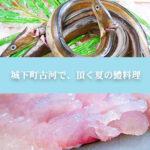 top-image_hamo_sp1