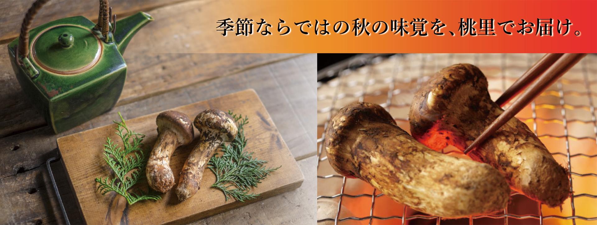 top-image_matsutake