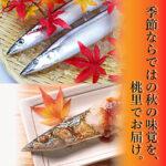 top-image_sanma_sp